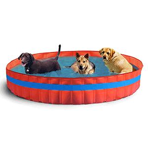 Tienda decarlino com art culos de perros carlino pug for Piscinas para perros baratas