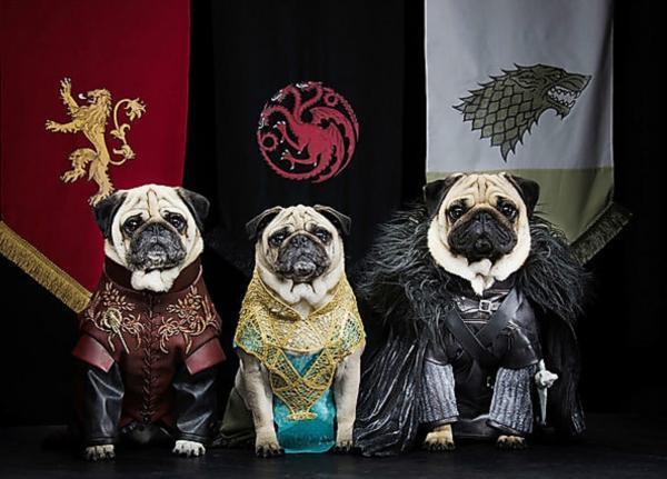 disfraces juego de tronos