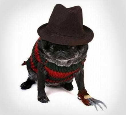 disfraz perro freddy krueger