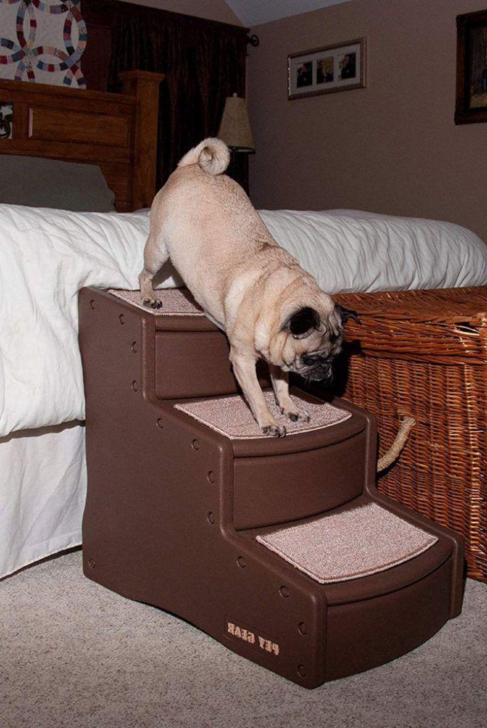 escaleras para perros