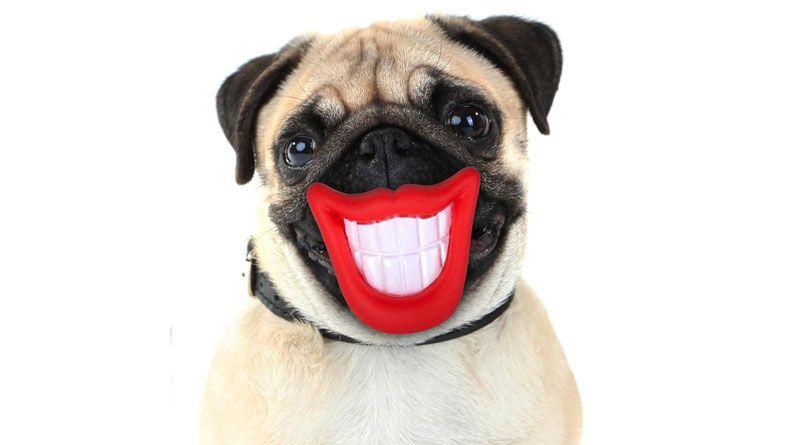 sonrisa dientes sanos