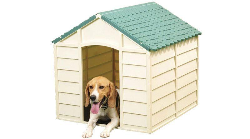 caseta de perro segunda mano