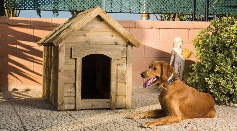 casetas perros grandes para exterior