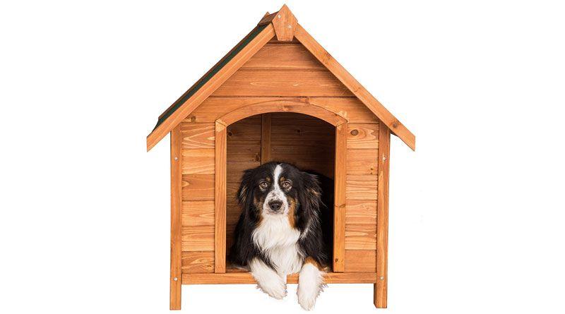 caseta perro madera