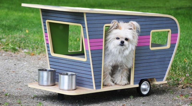 casas de perros pequeños