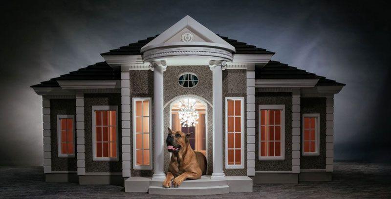 Casas Para Perros Baratas Mejores Casetas Para