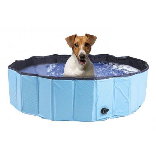 piscina-para-perros