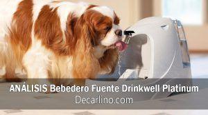 Bebedero Fuente Drinkwell Platinum